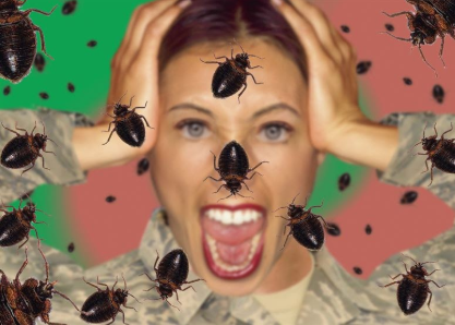 How to Get Rid of Bed Bugs Fast For a Peaceful Sleep