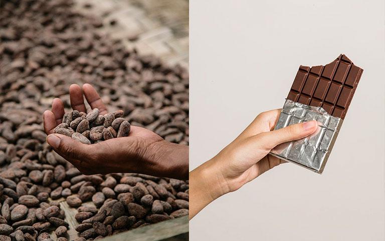 Cocoa powder and dark chocolate