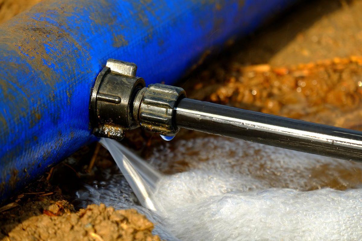 Water Leak for Ants