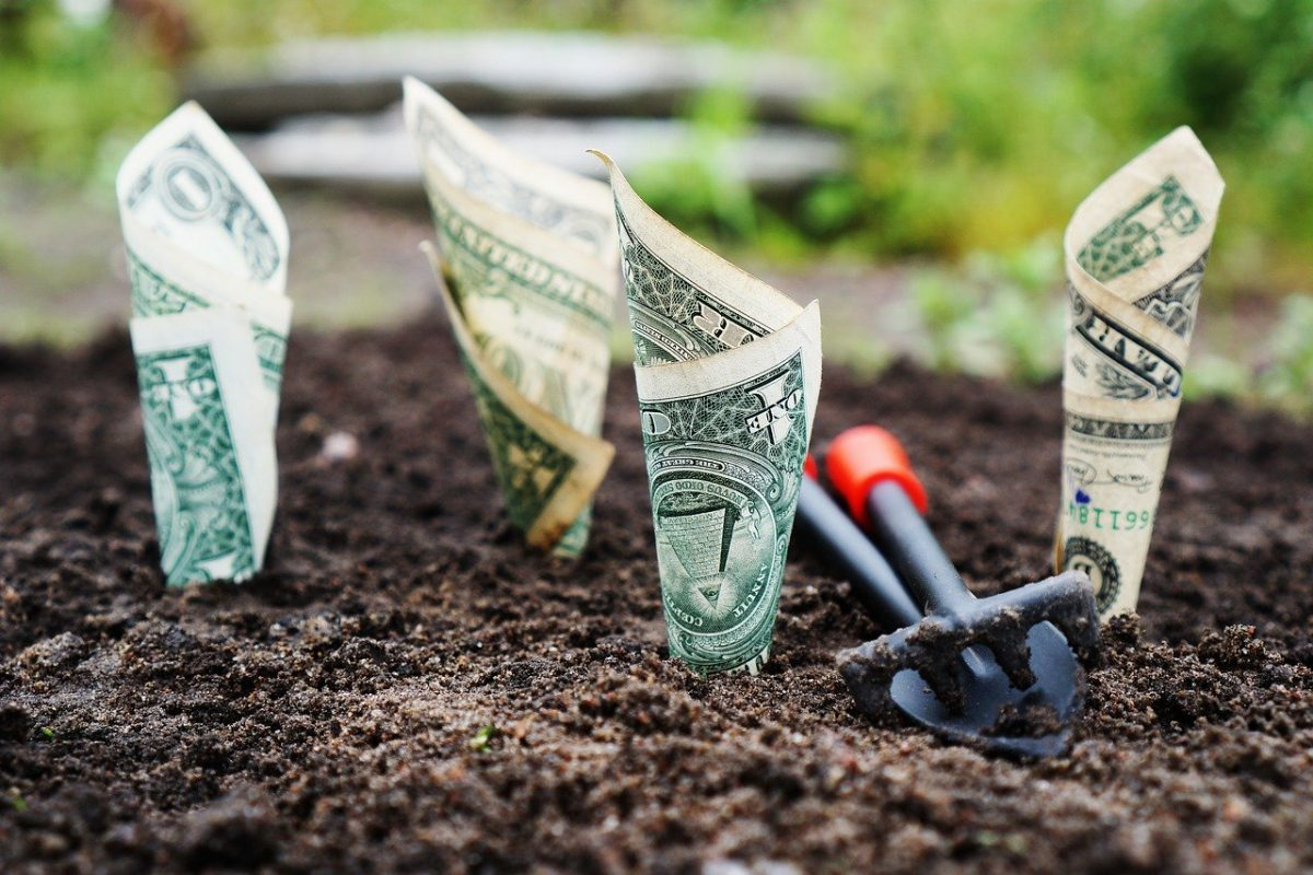 Growing your money