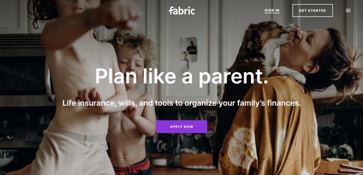Write a will through Fabric.com