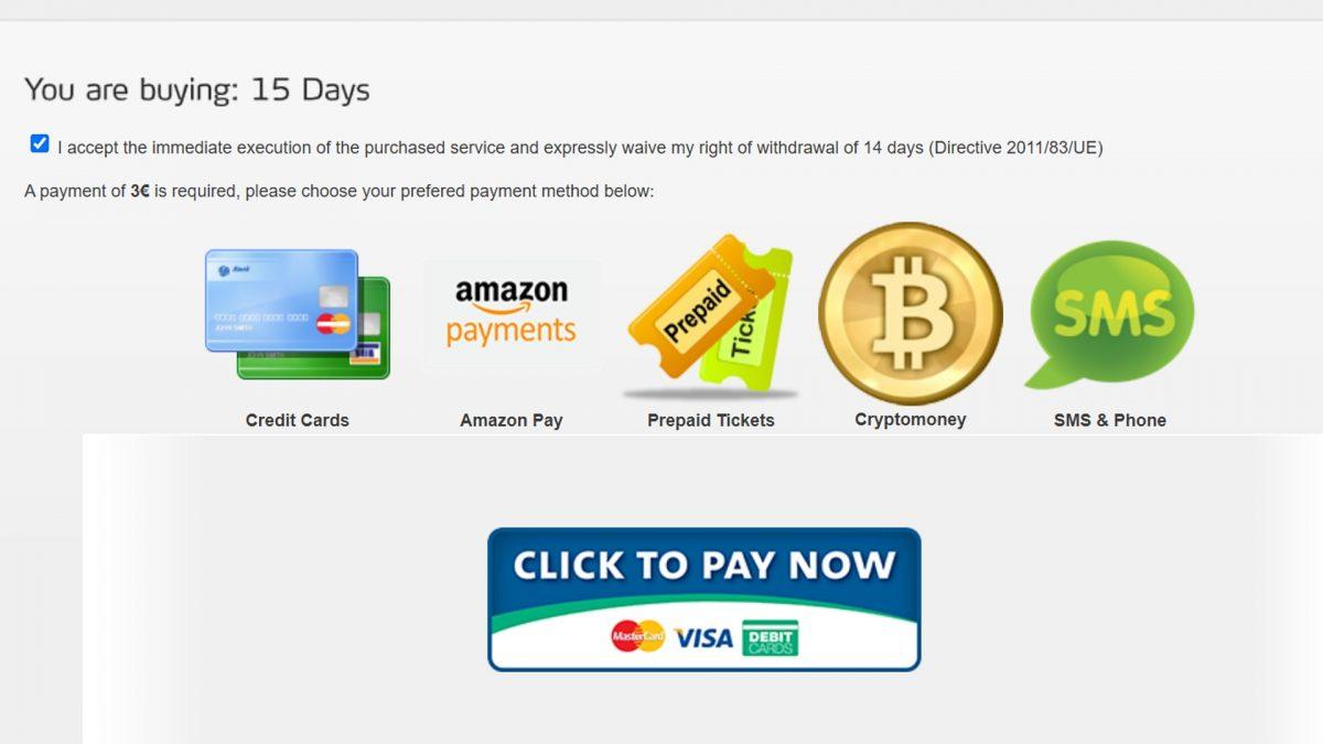 Real Debrid payment methods.