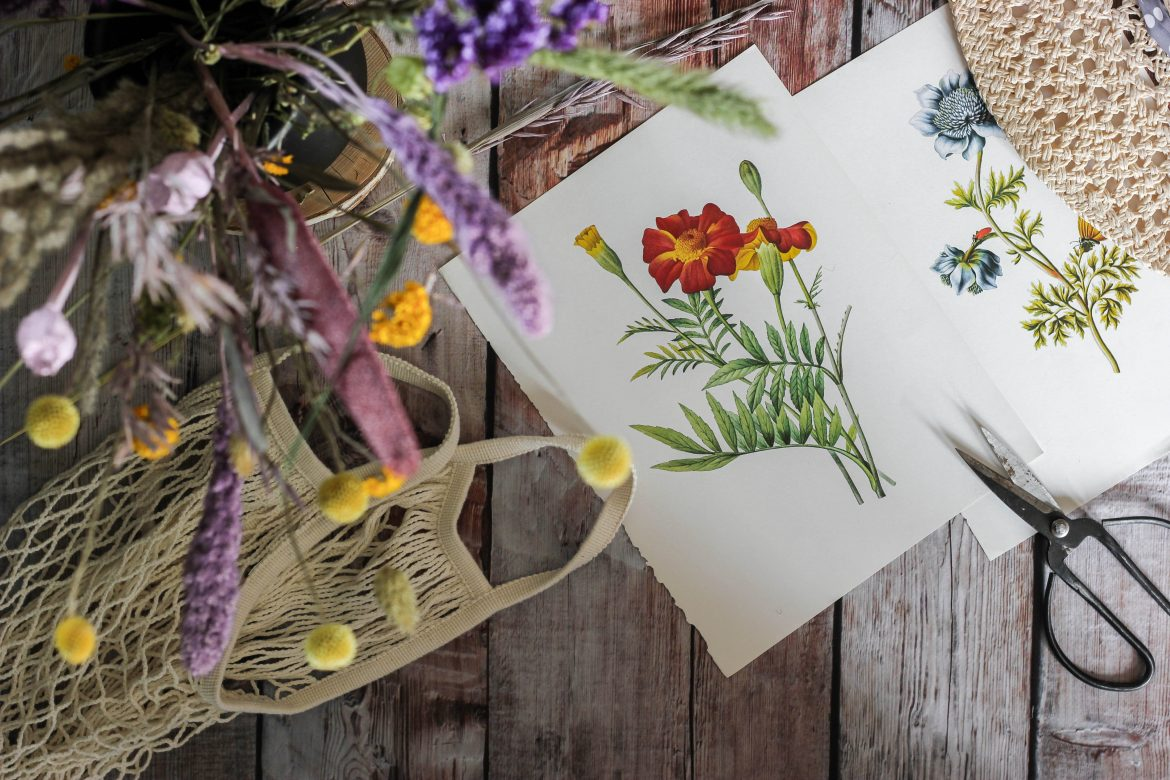 flower drawing beside flowers and scissors