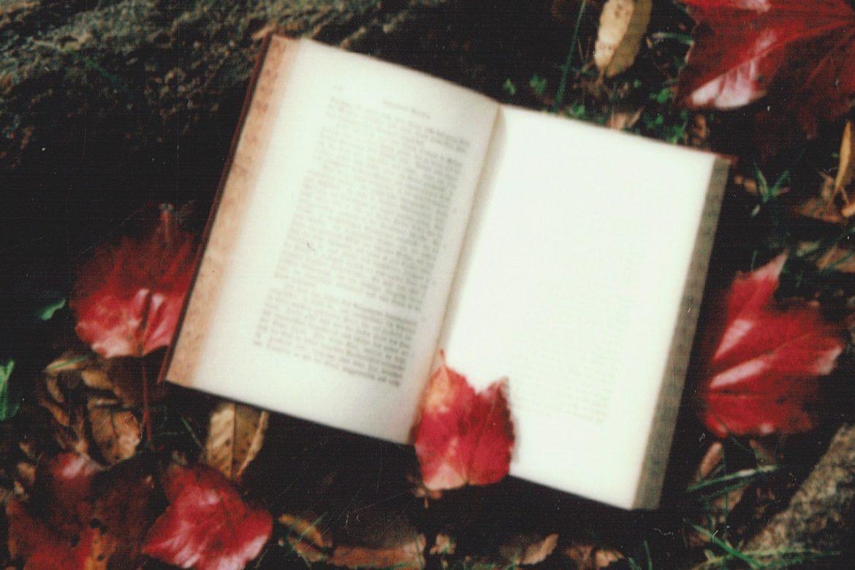 books like twilight