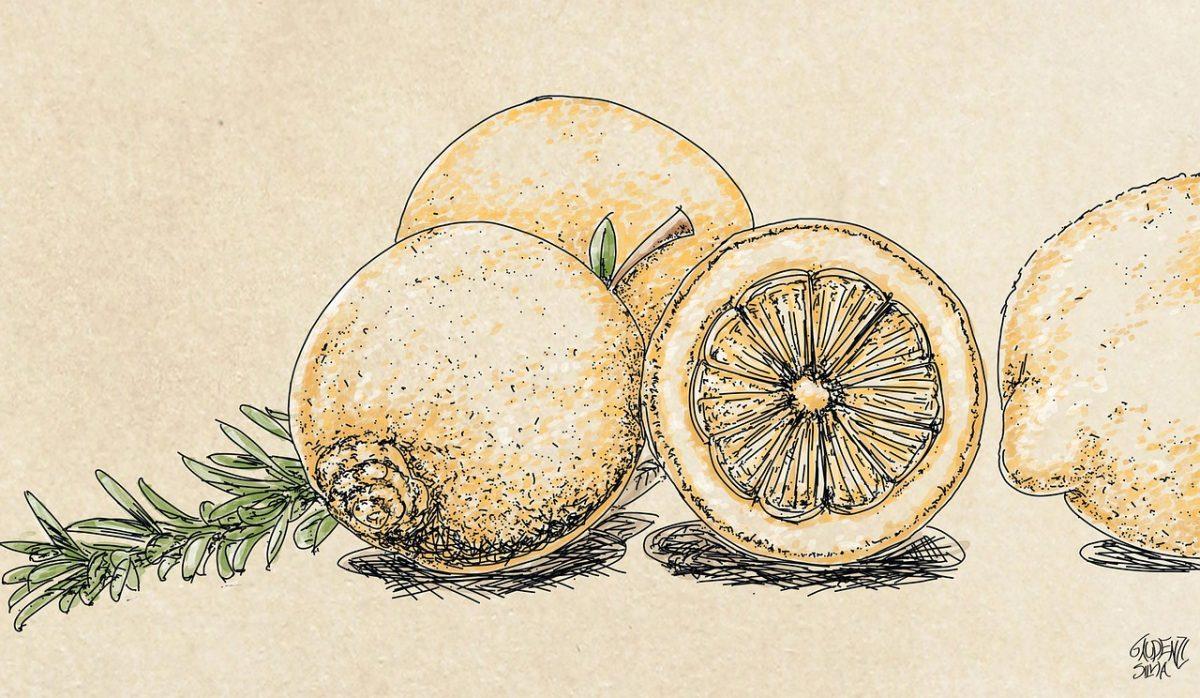 Easy Drawings of Fruits